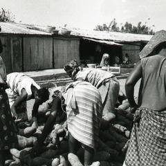 Sorting yams in Ilesa