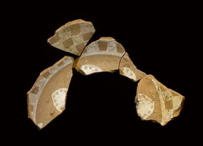 Dish fragments