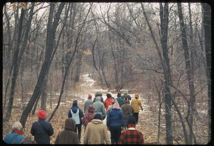 Guide training hike in Gallistel Woods, University of Wisconsin Arboretum