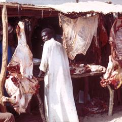 Butchershop in Touba