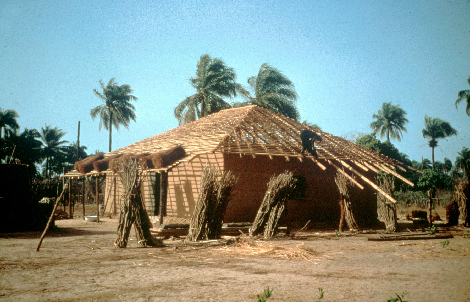 Applying Thatch to Roof a New House