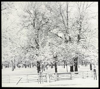 Kenosha City Park in winter