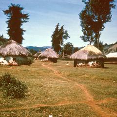 Kikuyu Houses in Nyeri Area