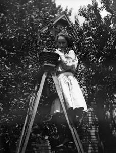 Girl picking fruit from tree