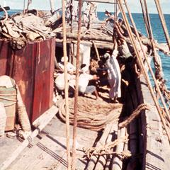 Riggings of a Dhow (Sailboat)
