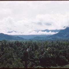 From top of Phu Si, some houses visible amidst vegetation