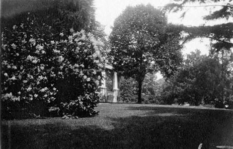 Front yard of Burlington house
