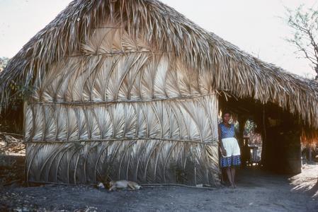 Palm house near Chiquimula, Guatemala