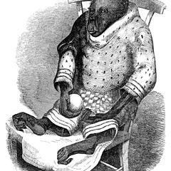Clothed Orangutan Print