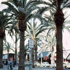 A Boulevard in Casablanca