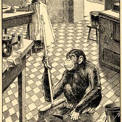 Cleaning Chimpanzee Print