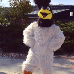 New mascot costume