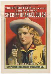 Sheriff of Angel Gulch