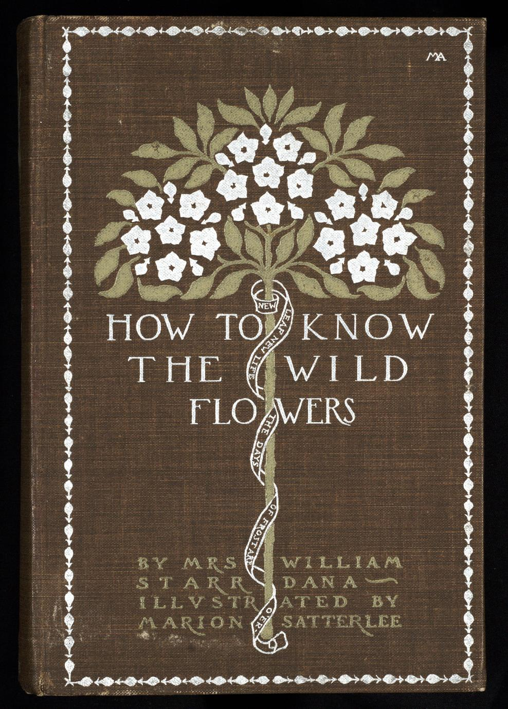 How to know the wild flowers : a guide to the names, haunts, and habits of our common wild flowers (1 of 3)
