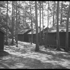 Trout Lake cabins among the forest