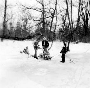 Luna, Aldo, and Estella Leopold stacking firewood on sled