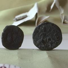 NG483, Kushano-Sasanian Coin
