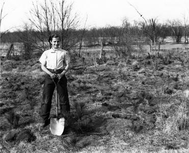 Estella Leopold planting pines