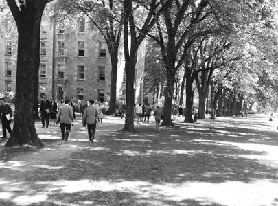 View of students walking up Bascom Hill