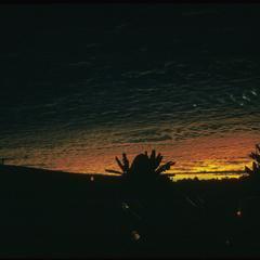Airport at sunrise