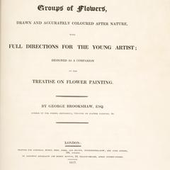 Groups of flowers : drawn and accurately coloured after nature, with full directions for the young artist : designed as a companion to the treatise on flower painting