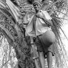 Posing Palm Wine Tapper Exchanging Containers