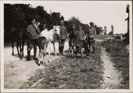 Fohlen. ganz rechts Oberfahnenschmied Berthold