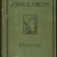 Southern forage crops