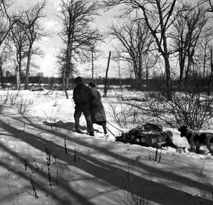 """Aldo and Estella pulling sled of firewood in the """"Shack Slough,"""" ca. 1936"""