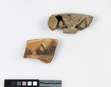 Dish fragments