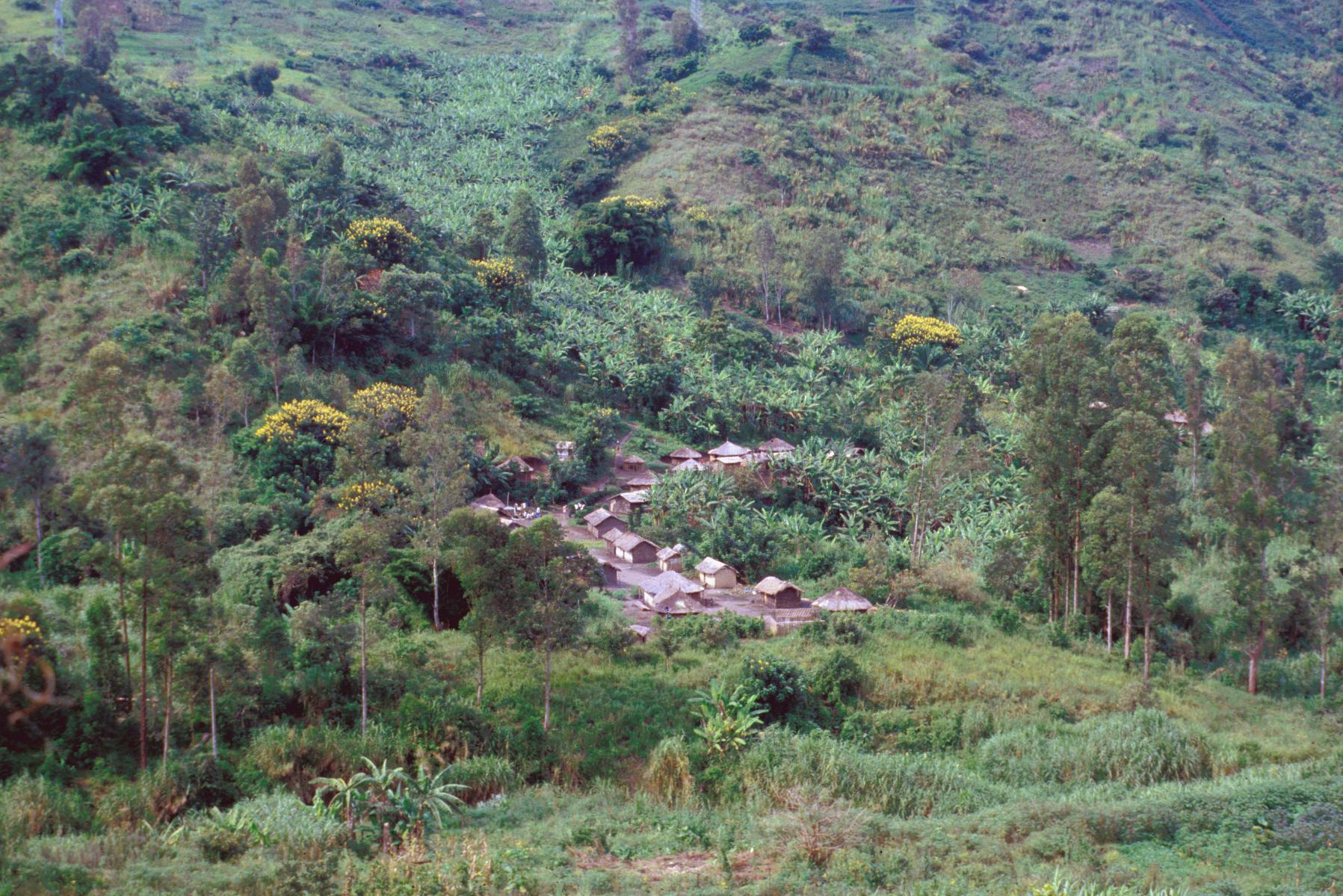 Village on Hills Near Lake Goma