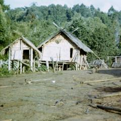 A typical Nyaheun house adjacent to a rice storage shed in Attapu Province