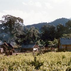 Yellow Lahu (Lahu Shi) village in Houa Khong Province