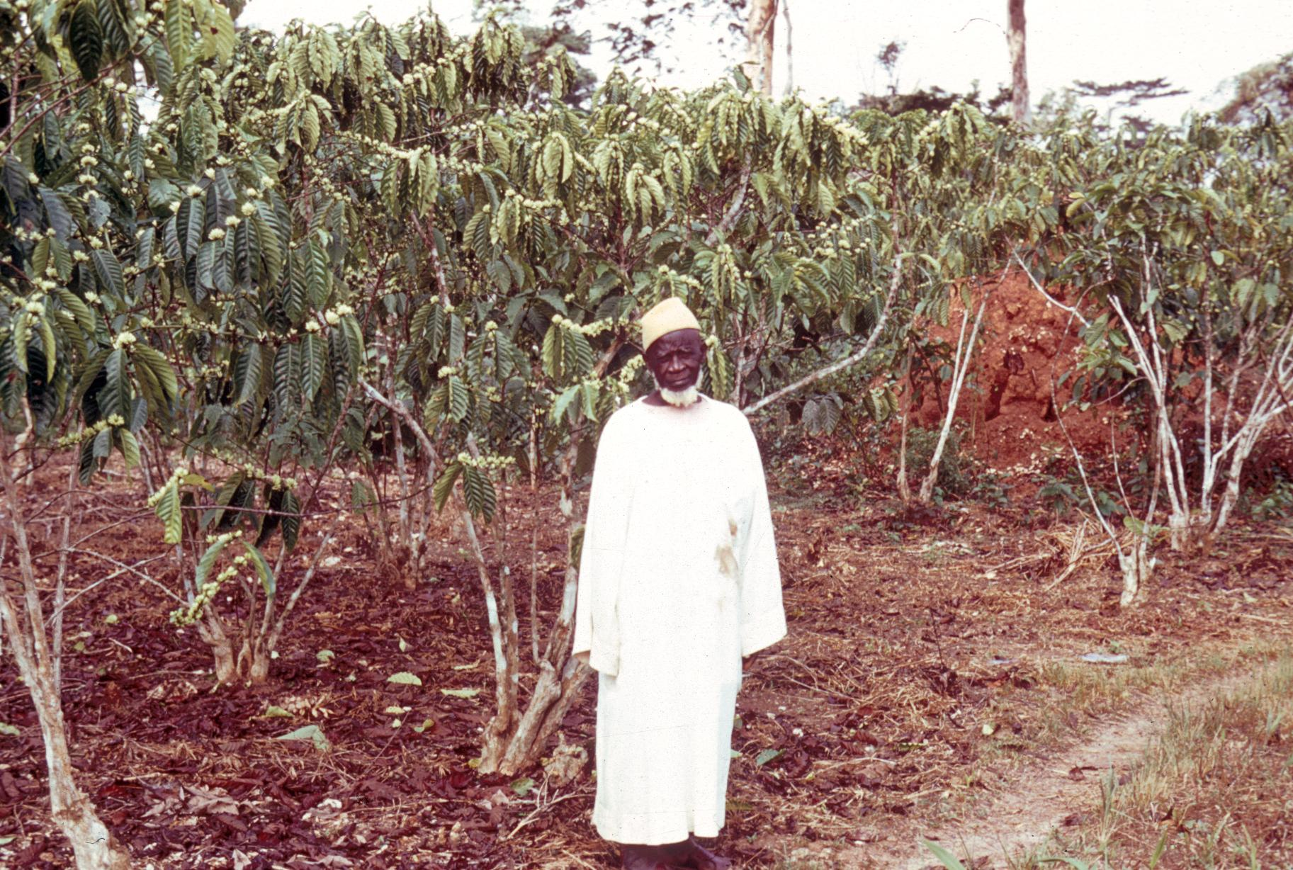 Owner with His Coffee Trees