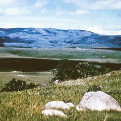 Swaziland High Veld