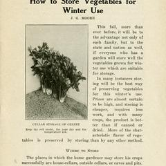 How to store vegetables for winter use