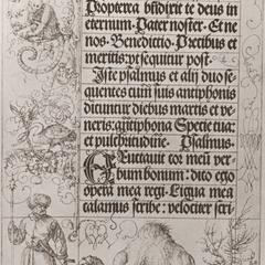 Dromedary, Swan and Monkey