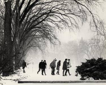 Students trudge through snow on Bascom Hill