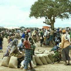 Food Distribution at Jalalaqsi Refugee Camp