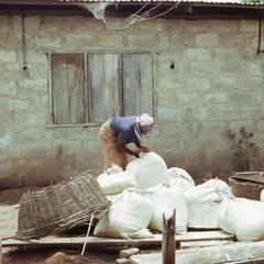 Woman working with gari
