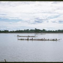 Boat races : rowing pirogues in mid-stream