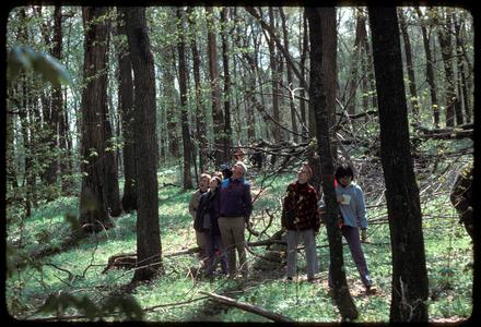 Tour group in Abraham's Woods, State Natural Area
