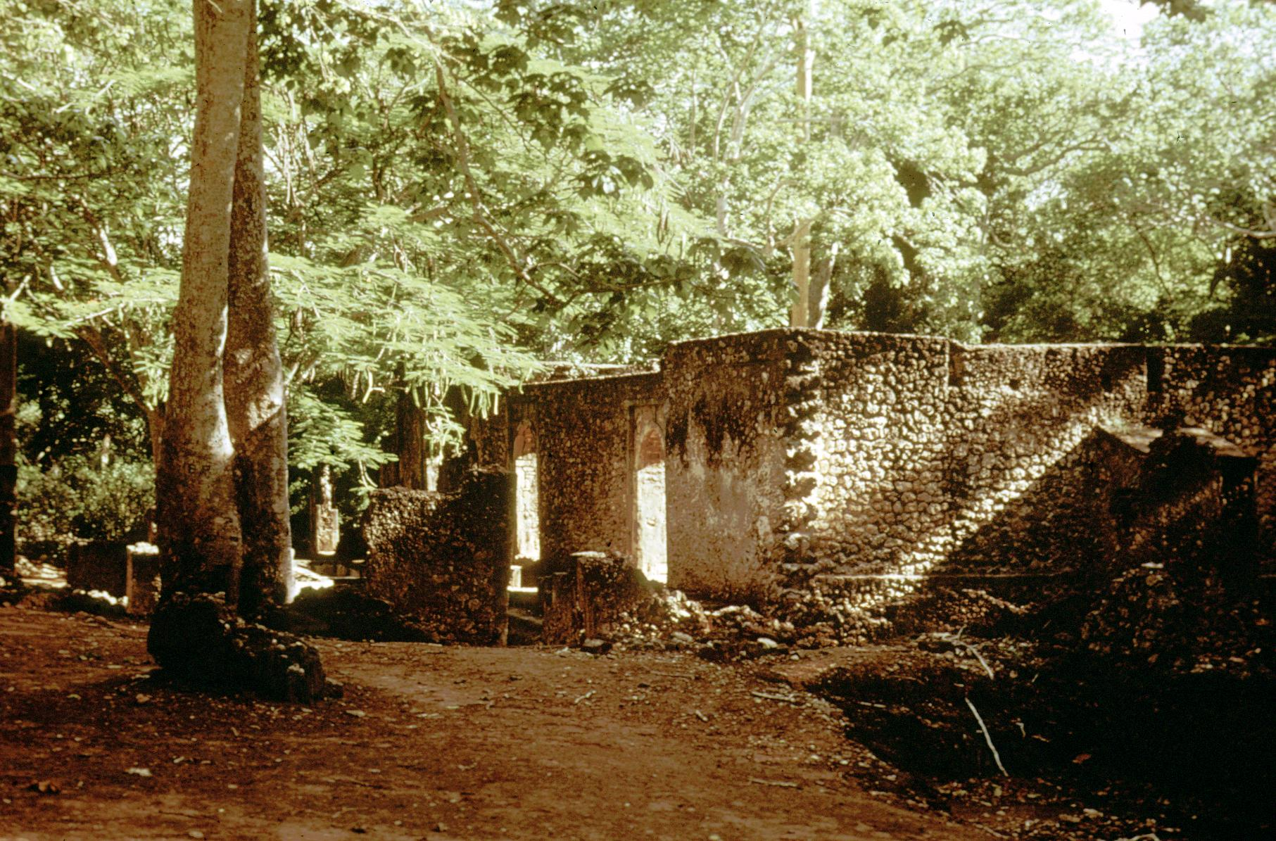 Ruins of the Palace of the Ruler of Gedi