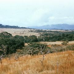 Landscape in the Futa Jalon