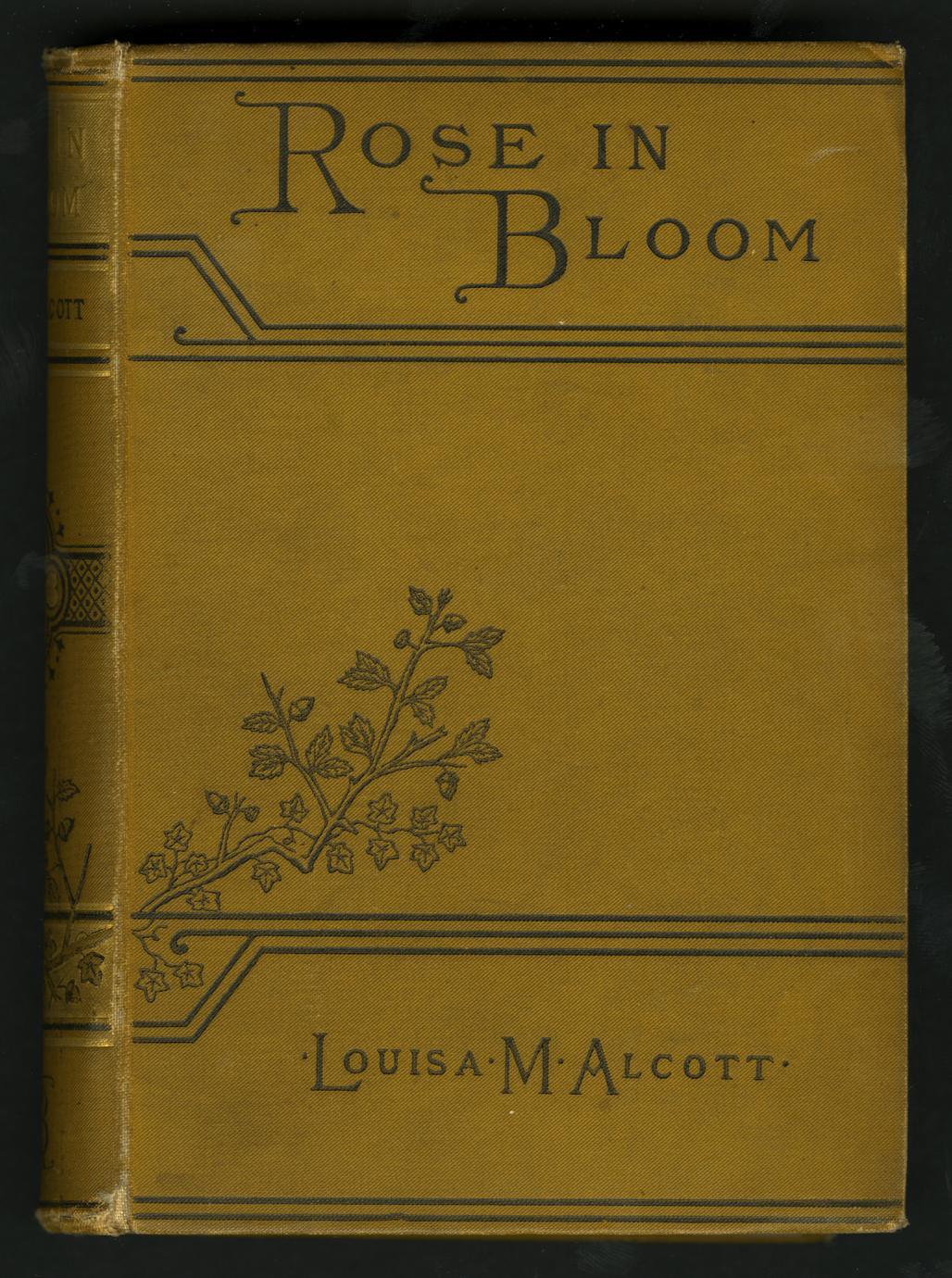 Rose in bloom (1 of 3)