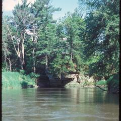 Pines at the Kickapoo River