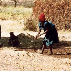 Women Making Dung Cakes for Fuel