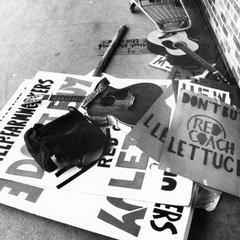 Lettuce protest