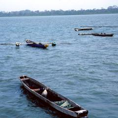 Shrimp Boats on the Gambia River