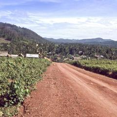 Sayabouri road